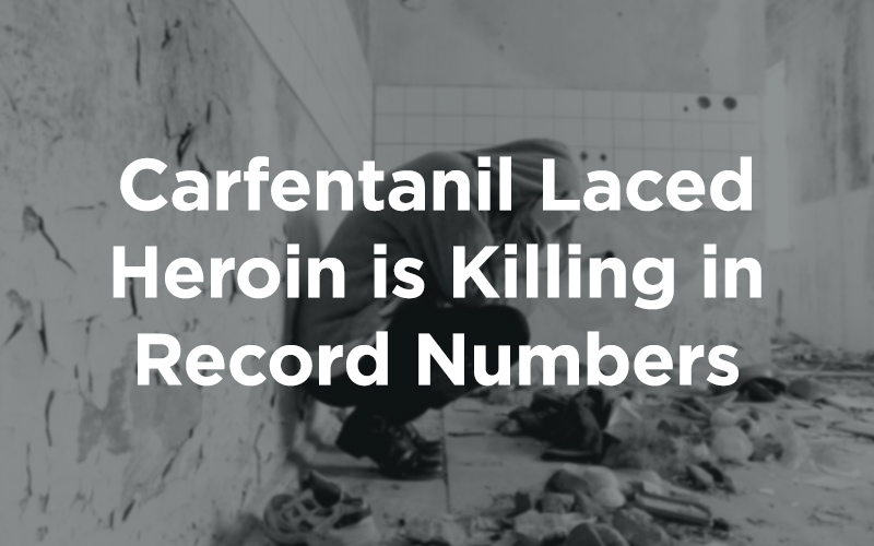 Carfentanil Laced Heroin is Killing in Record Numbers