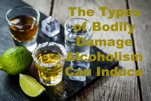 The Types of Bodily Damage Alcoholism Can induce